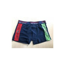 Women′s Briefs Short Underwears