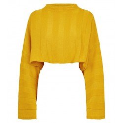 Rose Mustard Stripe Cropped Jumper